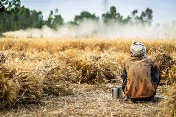 Agriculture & Rural Development_Africa